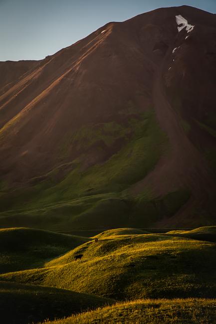 Kirgistan Yaks, Kyrgyzstan Yaks